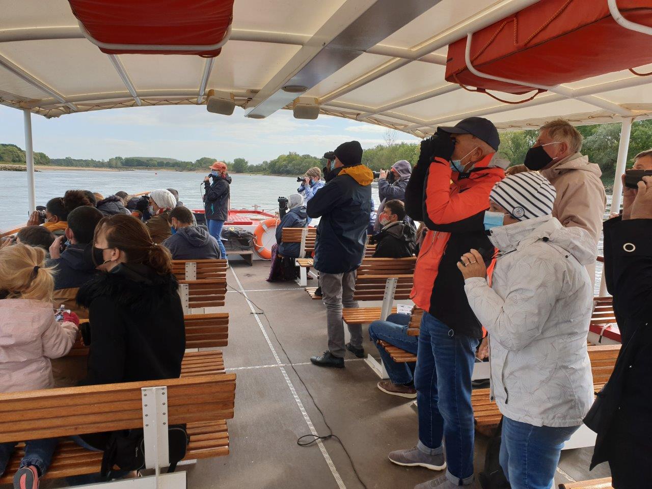 Observations ornithologiques sur la Loire